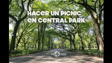 El Central Park es un parque urbano público situado en el distrito metropolitano de Manhattan, en la ciudad de Nueva York.