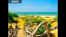 Zorritos. Si desea visitar lugares de naturaleza, puede visitar Puerto Pizarro o el Santuario Nacional Los Manglares de Tumbes, donde el agua dulce y salada generan un refugio silvestre perfecto para la observación de flora y fauna.