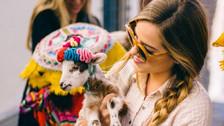 5 motivos para celebrar año nuevo en Cusco